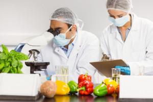Jedna trzecia żywności w UE ma takie samo opakowanie, ale różny skład