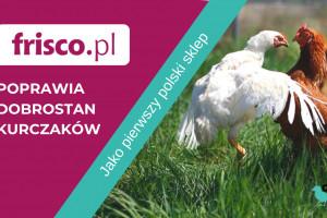 Frisco.pl zadba o dobrostan kurczaków