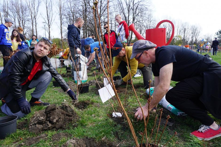 Sieć Aldi zasadzi 2800 drzew