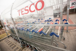 Kto w kolejce po sklepy Tesco?
