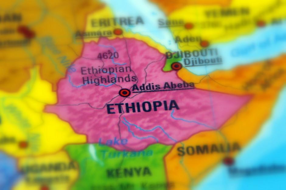 Etiopczycy skuszą się na pracę w Polsce? Pracodawcy są otwarci
