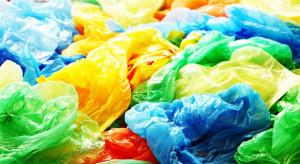 Torby plastikowe będą produkowane z pancerzy krabów?