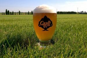 Browar Gzub: Piwo rzemieślnicze może być probiotyczne