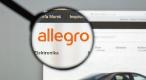 Allegro podnosi prowizje w kolejnych kategoriach