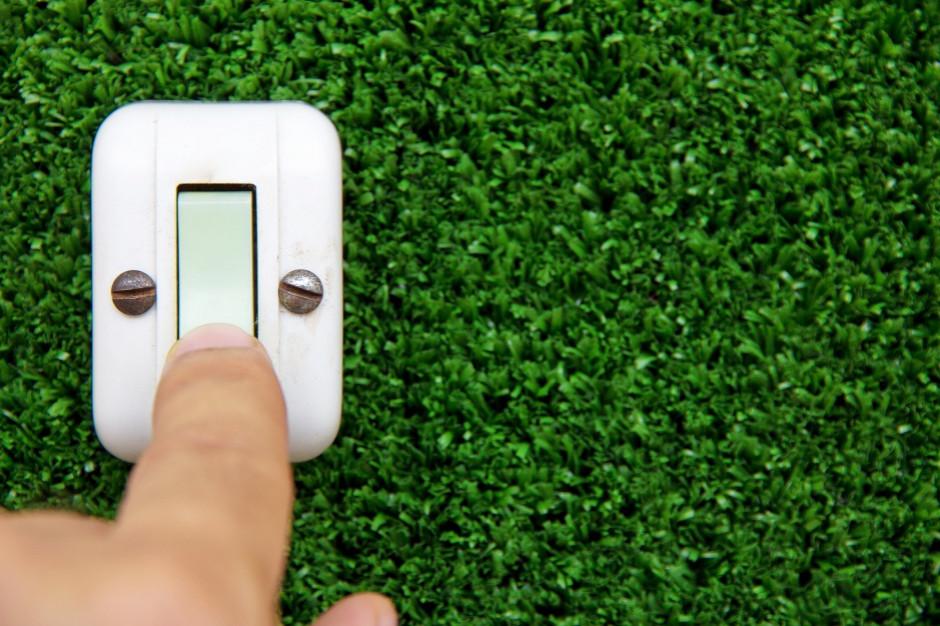 Temat tygodnia: Zielone rozwiązania przyciągają uwagę przedsiębiorców i konsumentów