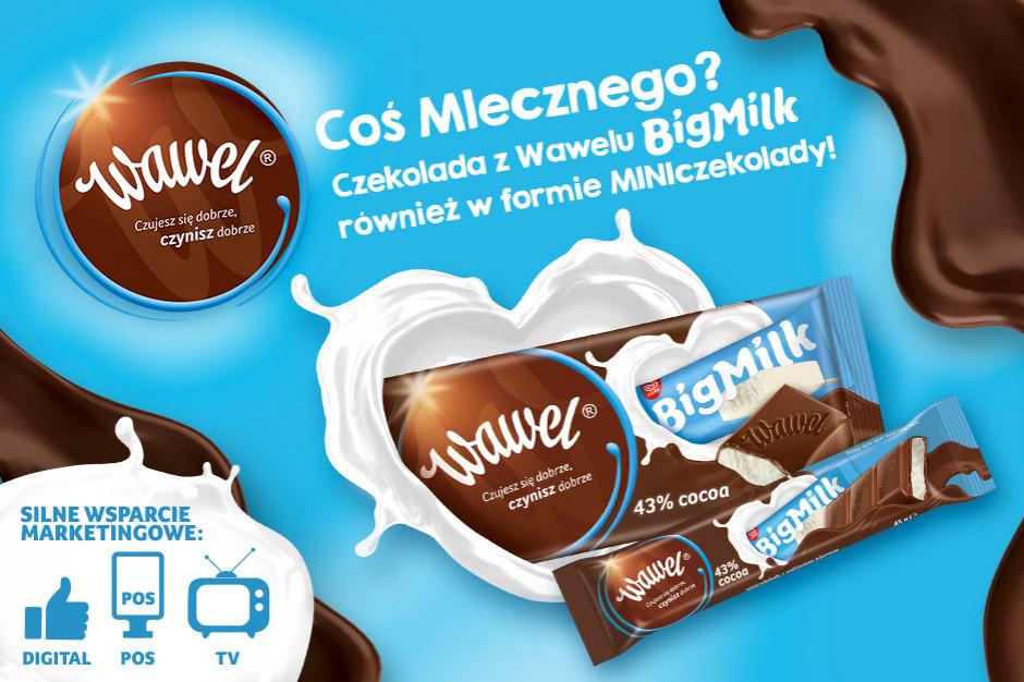 Czekolada z Wawelu Big Milk