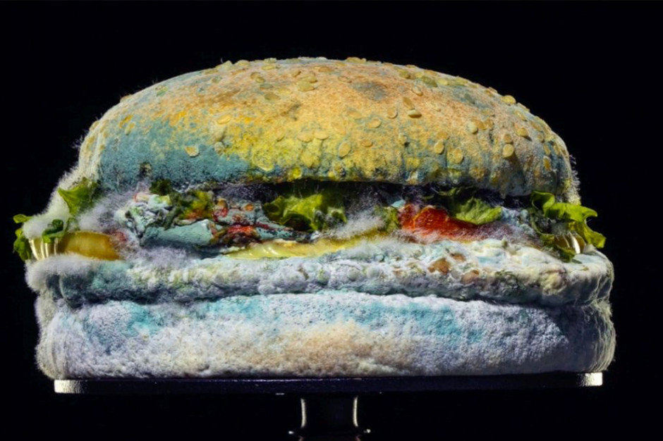 Reklama Burger King ze spleśniałym burgerem okiem rynkowych ekspertów