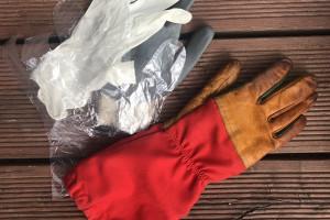 Rękawiczka teoretyczna, czyli moje zakupy w czasie epidemii