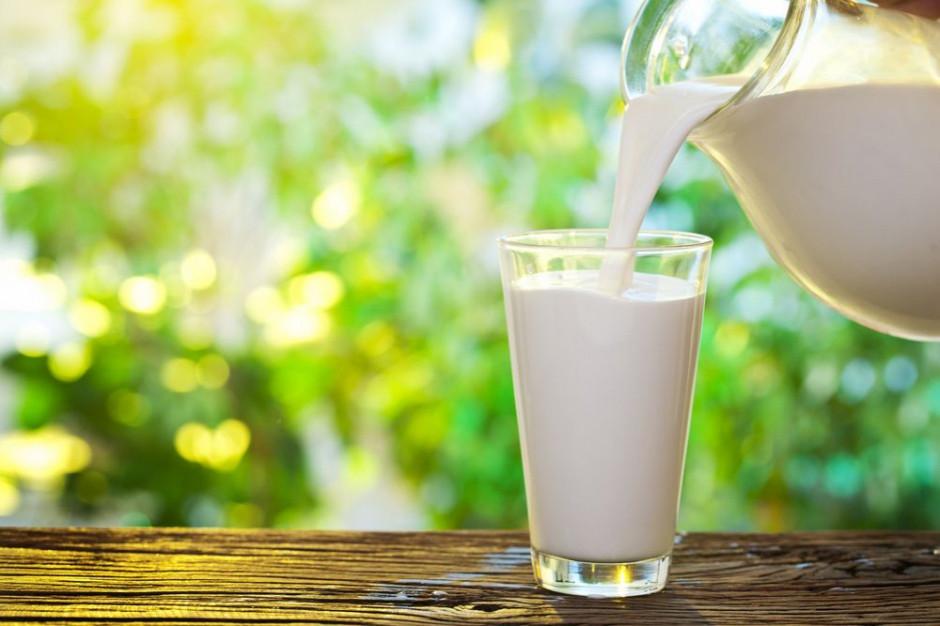 W 2019 roku wydaliśmy na produkty bez laktozy 450 mln zł; ten rok może być rekorodowy