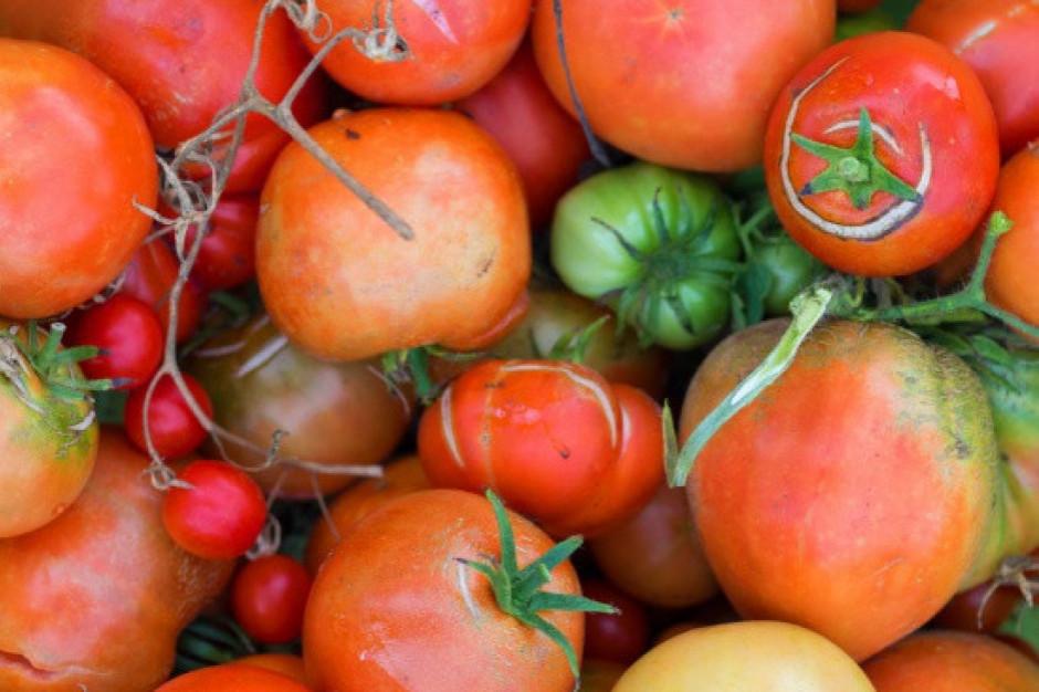 """USA: Start-upy sprzedają """"niedoskonałe"""" owoce i warzywa w schemacie subskrypcji"""