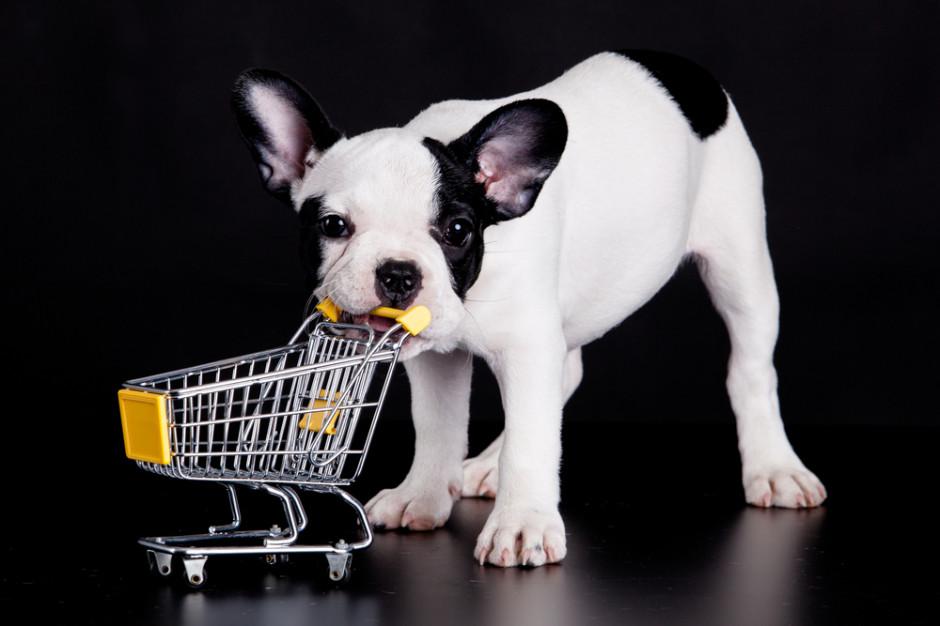 Reklama Biedronki zaskarżona do KER. Chodzi o zostawienie psa pod sklepem