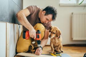 Analitycy: Popyt na materiały remontowo-budowlane utrzyma się