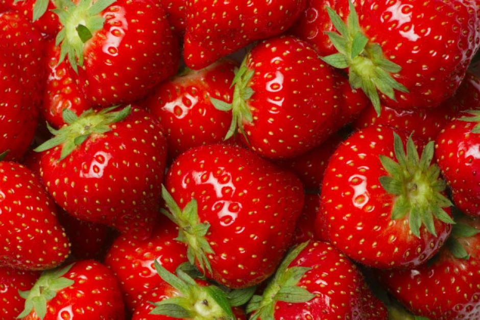 Przez chłody wyższe ceny truskawek