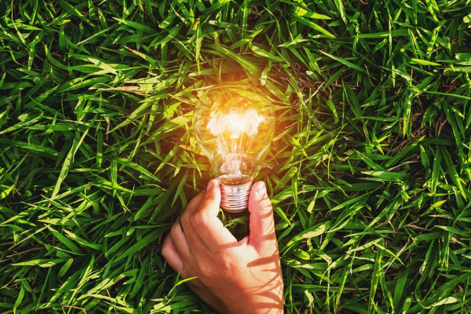 Auchan przejdzie transformację energetyczną