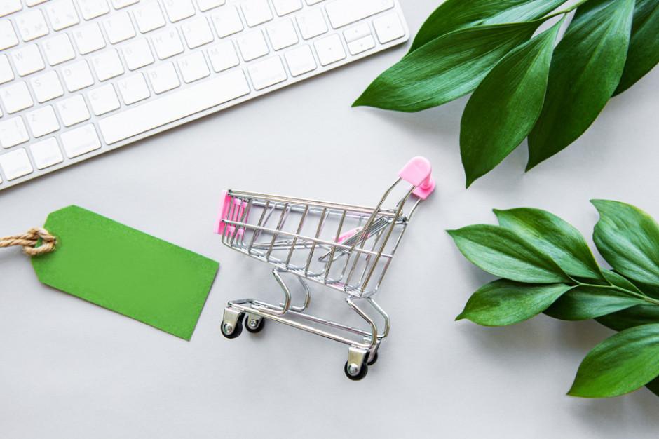 E-konsumentom przeszkadzają: brak darmowej dostawy oraz nieekologiczne opakowania