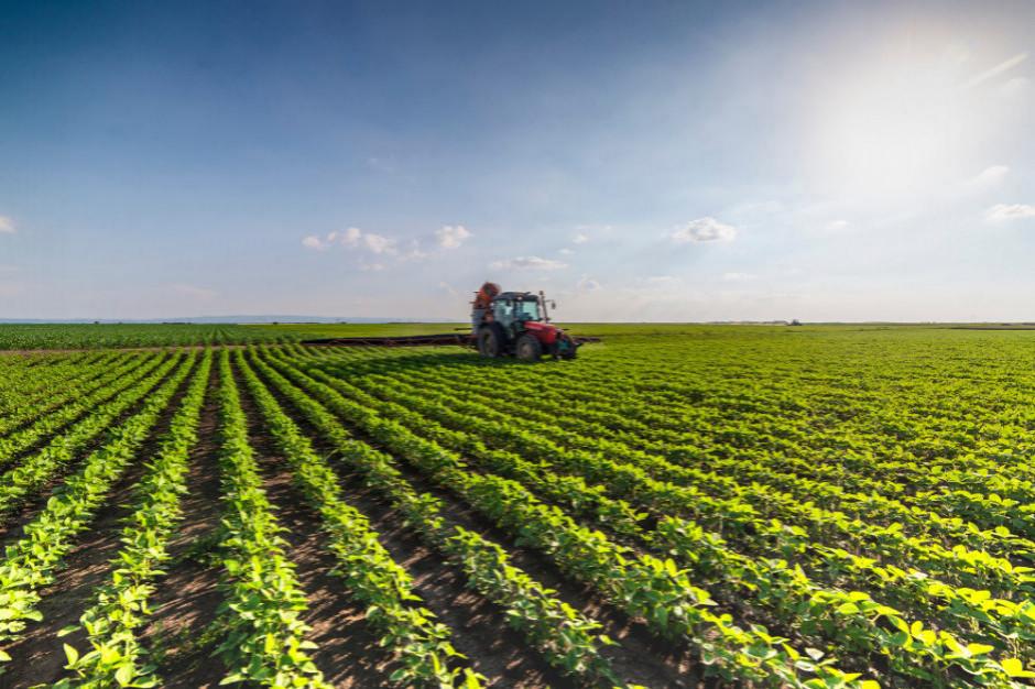 3/4 Polaków jest zainteresowanych kupowaniem produktów rolnictwa zrównoważonego