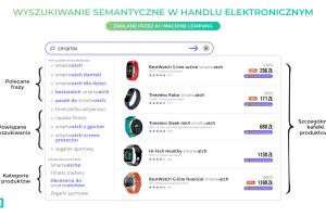 Wyszukiwarki semantyczne jednym z elementów rozwoju e-sklepów