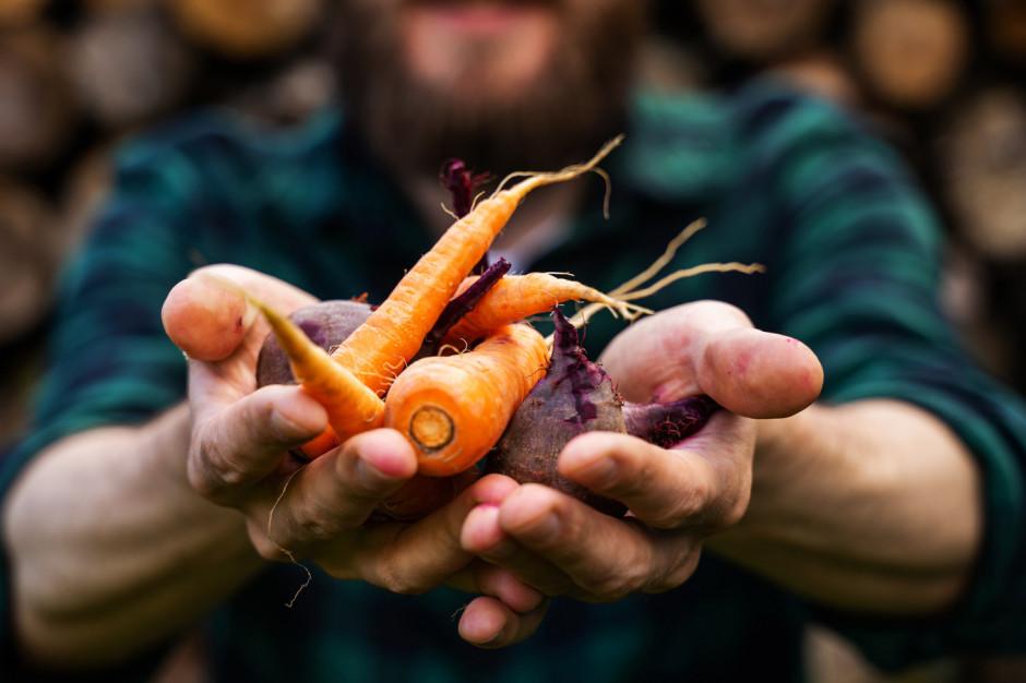 Jak sprzedawać zdrową żywność w internecie?