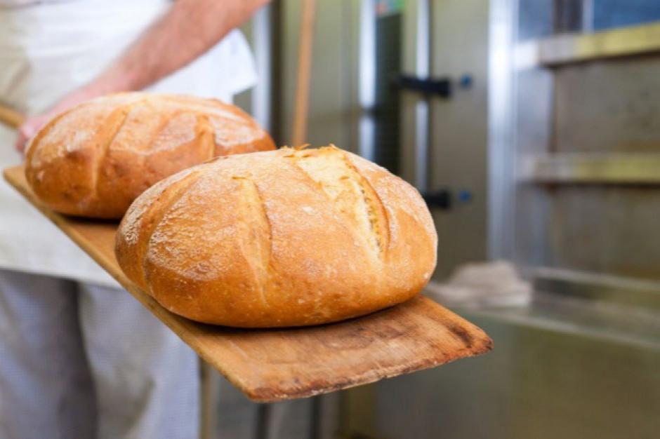 Ile kosztuje chleb w Polsce? Podpowiadamy premierowi