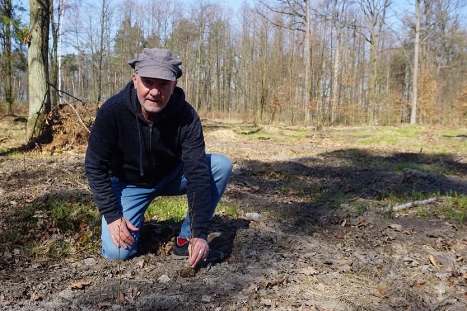 ALDI posadzi ogrody dla wiewiórek, nietoperzy, ptaków i zapylaczy