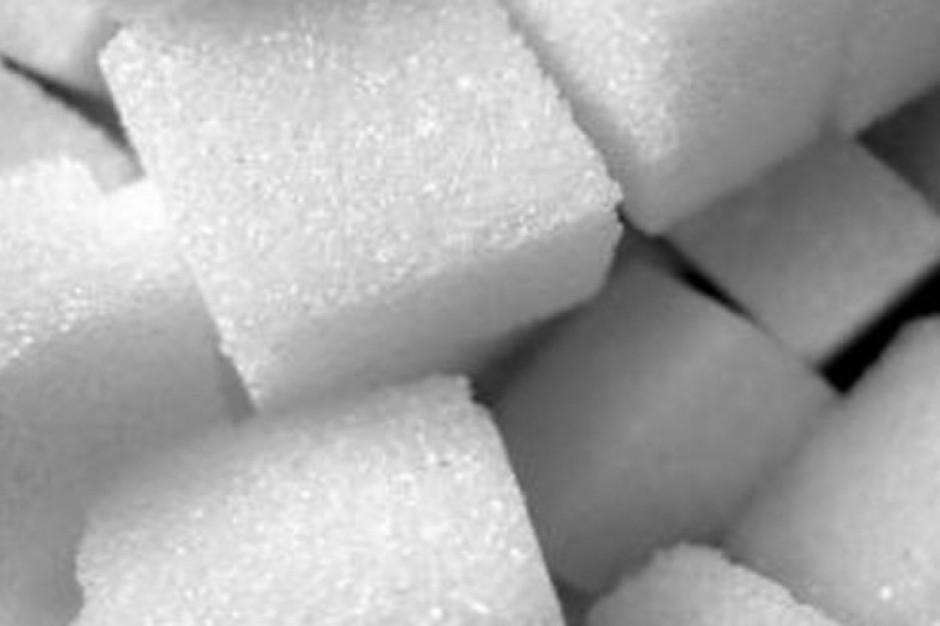 Badanie: długotrwałe spożywanie substancji słodzących zakłóca działanie układu nagrody