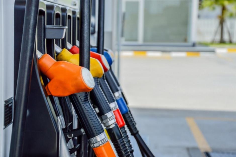 Ceny paliw pobiły rekordy. Będzie drożej w sklepach?