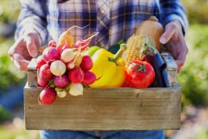 Polscy klienci są świadomi wyższej zawartości składników odżywczych w jedzeniu bio. Fot. Shutterstock