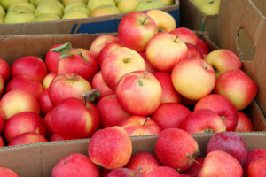 Jak powinny być wyceniane jabłka?